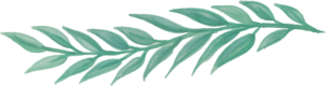 green organic leafac