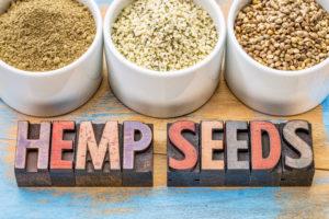 livity foods everbar everhemp everbark healthy organic hemp seed food